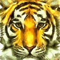 Tiger Painted by Catherine Lott
