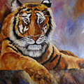 Tiger Resting by Mary Jo Zorad