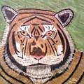 Tigerish by Lisa Bowersock