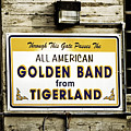 Tigerland Band by Scott Pellegrin