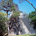 Tikal Iv by Kurt Van Wagner