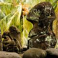 Tiki Carvings In Hatiheu Village, Nuku by Tim Laman