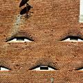 Tile Roof In Medieval Sibiu  Eye-shaped Windows by Daliana Pacuraru