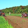 Tilled Soil   by Lyle Crump