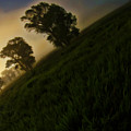 Tilted Foggy Sunrise by Blake Richards