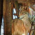 Timber Wolf Colorful Art by Eleanor Abramson