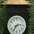 Time In The Garden by DigiArt Diaries by Vicky B Fuller
