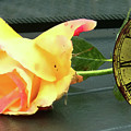 Time To Give A Rose - Yellow And Pink Rose - Clock Face by Marie Jamieson