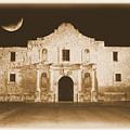 Timeless Alamo by Carol Groenen