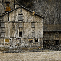 Tin Cup Chalice Rustic Barn by John Stephens