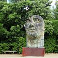 Tindaro Screpolato Sculpture In Boboli Garden 0197 by Jack Schultz