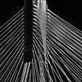 Ting Kau Bridge Hong Kong by Charles King
