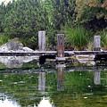 Tiny Dock by Matias Dandrea