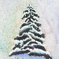Tiny Snowy Tree by Marsha Karle