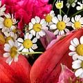 Tiny White Flowers by Barbra Kotovich
