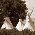 Tipis In Toppenish by Carol Groenen
