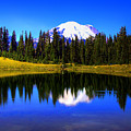Tipsoo Lake And Mt Rainier by David Patterson