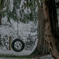 Tire Swing In Winter by E Faithe Lester