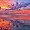Titusville Sunset by Louise Hill