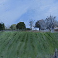 Tiverton Pasture by Helene Mohn