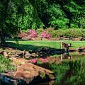 Taking A Break At The Azalea Pond by Tamyra Ayles