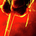 Tmnt 1   -  Raphael Smoky Red. by Prar Kulasekara