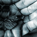 To Be Held by Abstract Angel Artist Stephen K