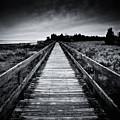 To The Beach by Eric Ferrar