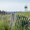 To The Beach by Robert Anastasi
