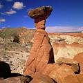 Toadstool Caprocks Utah by Yva Momatiuk John Eastcott