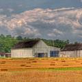 Tobacco Barn 2 by E R Smith
