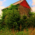 Tobacco Barn On A Rise by Doug Berry