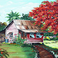 Tobago Country House by Karin  Dawn Kelshall- Best