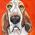 Toby by Barbara O'Toole