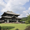 Todaiji Temple by Andy Smy