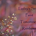 Todays Seeds Paint Tomorrows Rainbows by Mark Bell