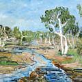 Todd River by Joan De Bot