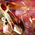 Toe Shoes by Barbara Berney