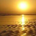 Tofino Sunset by Bari Demers
