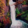 Tokeetee Falls by Martin Massari