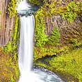 Toketee Falls by David Millenheft