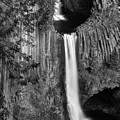 Toketee Falls by Leland D Howard