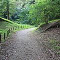 Tokyo Park Path by Carol Groenen