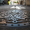 Tokyo Sewer Cover by Jonathan Craft
