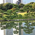 Tokyo Trees Reflection by Carol Groenen