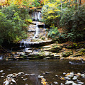 Tom Branch Falls In Autumn by Jill Lang