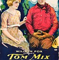 Tom Mix In Treat'em Rough 1919 by Mountain Dreams