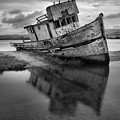 Tomales Bay Black And White Shipwreck by Adam Jewell
