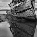 Tomales Bay Shipwreck Black And White Portrait by Adam Jewell