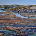 Tomales Bay Tangents by Debbie Harding